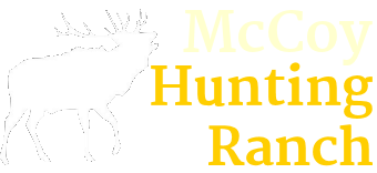 About Our Elk Deer And Buffalo Hunts Mccoy Hunting Ranch